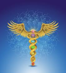 The Caduceus YinYang Snakes