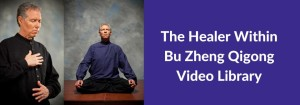 healerwithinvideolibrary
